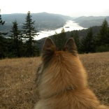 Overlooking the Columbia River