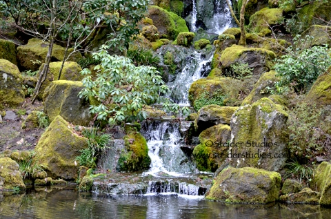 Steider Studios:  Japanese Garden. Waterfall