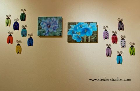 Steider Studios:  Flowers and Buggettes at 'The Nook' Solo Show