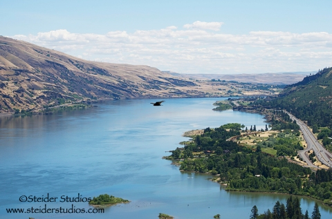 Steider Studios:  View from Rowena Crest