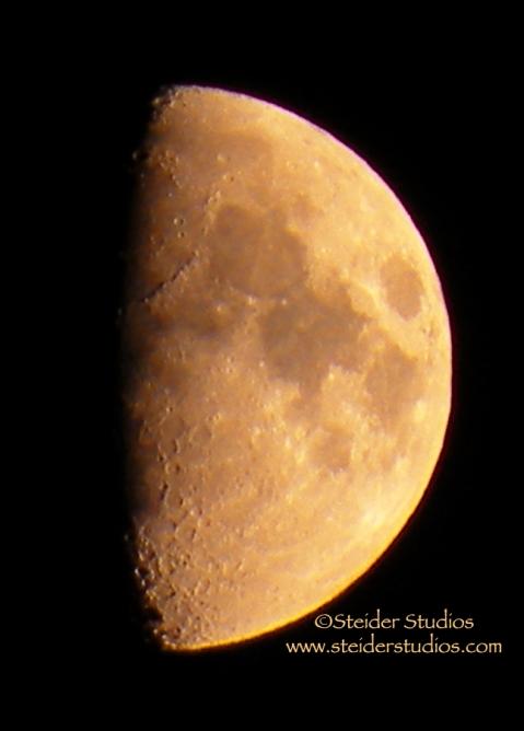 Steider Studos:  Half Moon