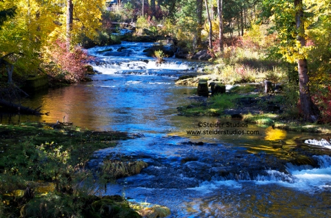 Steider Studios:  Trout Lake Creek.  10.18.13