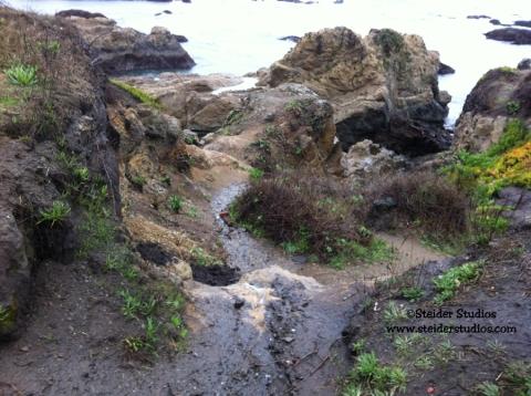 Steider Studios:  Trail to Glass Beach