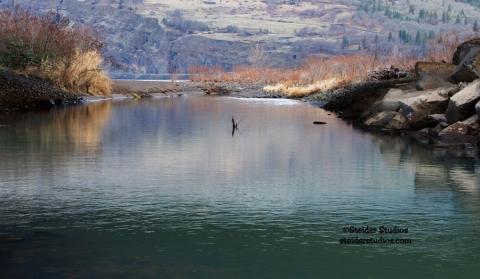 Steider Studios:  Mosier Creek at Columbia River