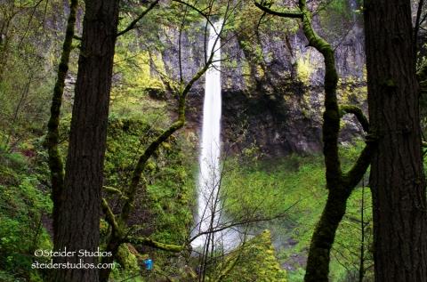 Steider Studios:  Elowah Falls