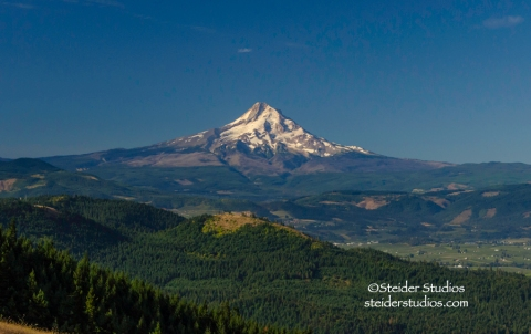 Steider Studios:  Mt. Hood in the Morning