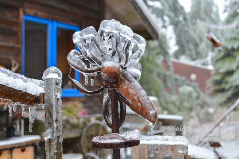 Steider Studios.Ice Storm-35