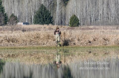 Steider Studios.Conboy Lake Frogs.3.8.15-6