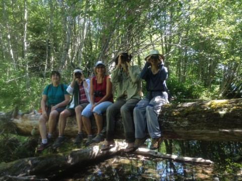 Columbia Gorge Bird Nerds