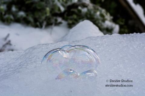 Steider Studios.Ice Day.12.18.15-11