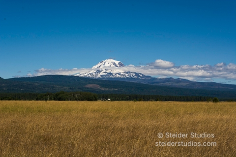Steider Studios.Mt Adams from Kreps Ln.7.13.16