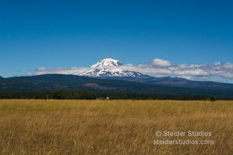 Steider Studios.Mt Adams from Kreps Ln.7.13.16