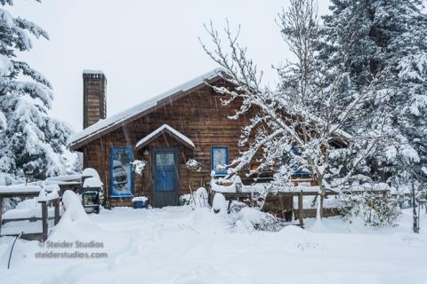 steider-studios-cabin-in-the-woods-12-9-16
